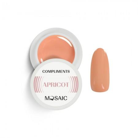 Compliments APRICOT gel paint