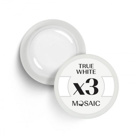 "NEW! ""Mosaic' Gel paint ""True white"" 5ml"
